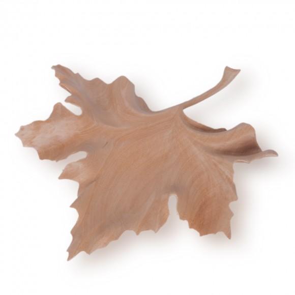 TALLA FULLA DE PLATANER (PER ENCÀRREC)