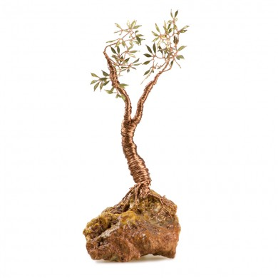 SMALL COPPER OLIVE TREE